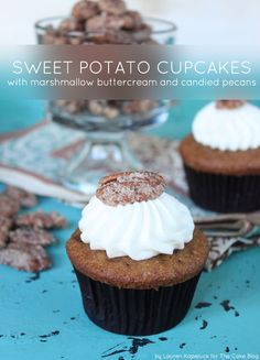 A spin off to traditional sweet potato casserole, this cupcake is perfect for your Thanksgiving feast. Brown Butter Sweet Potato & Candied Pecan Cupcake topped with a Marshmallow Buttercream! Recipe by Lauren Kapeluck. Cupcake Recipes, Dessert Recipes, Dessert Ideas, Cupcake Bakery, Cupcake Art, Cupcake Ideas, Marshmallow Buttercream, Buttercream Recipe, Sweet Potato Cupcakes