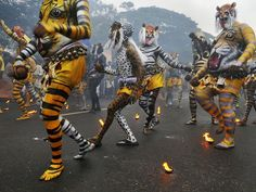 Tiger Parade by Shantanu Das via nationalgeographic: Artists painted as tigers transform a road into a carnival during the fourth day of Onam—an annual harvest festival in Kerala, India. #Kerala #India #Shantanu_Das #Tiger_Parade #nationalgeographic