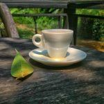 Outdoor Coffee Moments  A Symphony of the Senses