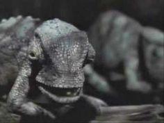 Critter Fest: Budweiser Frogs Lizards and Ferret!! 18 clips!