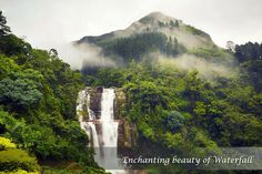 Nuwara Eliya in Sri Lanka: Drugs just have never interested me, I have other ways to achieve a rush. I admire nature & hike waterfalls 4 my EXCITEMENT!