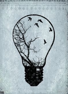 birds in a light bulb - Google Search                                                                                                                                                                                 More