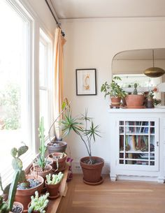 oakland home with built-in bookcases and potted plants / sfgirlbybay