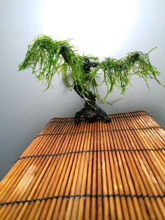 AquaBonsai Tree for Your Tank by AquaBonsai on Etsy