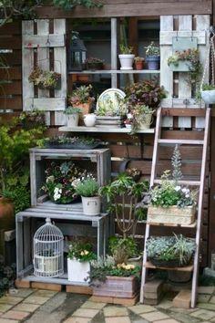 5 Pequeños Jardines
