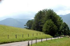 Cades Cove is the most beautiful place to have a picnic on a blanket in a field! #perfect