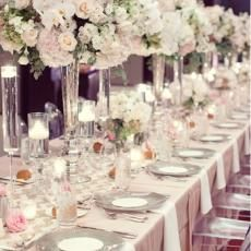 Decor  tall centerpieces clear vase hydrangea centerpieces orchids ghost chairs place settings