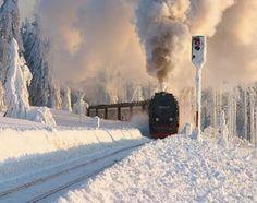 snow train, old trains, hogwart, winter wonderland, toy train, beauti, blog, new years, photographi