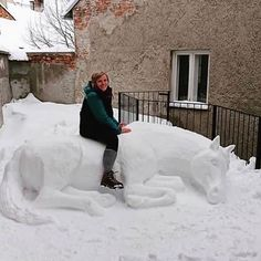 Fan of Horses - the one stop shop for horse fanatics Q:😍🐴😍caption this!😍🐴😍 Did you get snow already! A: I don't get snow! Animals And Pets, Funny Animals, Cute Animals, Animal Pictures, Cool Pictures, Snow Sculptures, Metal Sculptures, Bronze Sculpture, Wood Sculpture