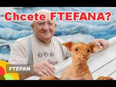 Chcete FTEFANA? - Srstka nabízí Ftefana, Fofola už ho prý nepotřebuje! - YouTube Teddy Bear, Baseball Cards, Youtube, Animals, Animaux, Animales, Youtubers, Animal, Youtube Movies