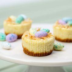 Add a festive Easter twist to the classic mini cheesecakes we all love. #dessert #recipe
