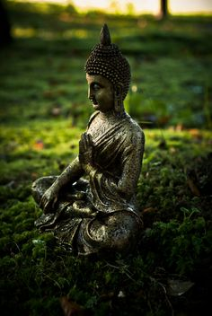 When you're on the massage table, you just lay there and let the masseaur take care of you. It is the same with meditation. Just relax and let nature take care of you.__Photo: Buddha.