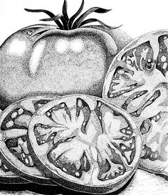 You Say Tomatoes by Marilyn Healey example of stipple
