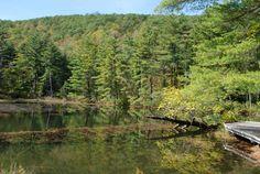 Pleasant Valley Wildife Sanctuary in Lenox Massachusetts - New England bike tours