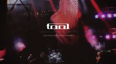 "Animated Artworks for TOOL Live Performances October 2015, San Francisco, CA  I have worked on new visuals based on my current experiments with morphogenesis and higher dimensional geometries for one of my all-time favourite bands TOOL. Consisting of 10 video loops, the visuals took place for the first time in Tempe, Arizona concert, the only show of 2015 and later were involved in the 2016 U.S. tour accompanying the new song ""Descending"".  TOOL is an American rock band from Los Angeles..."