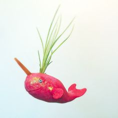Handmade narwhal airplant holder home decor by jellyfishkisses