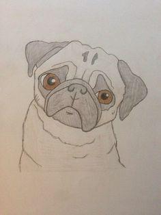 I love my drawing of a pug Animal Sketches, Animal Drawings, Art Sketches, Disney Drawings, Cartoon Drawings, Easy Drawings, Drawing Heart, Pug Cartoon, Images Kawaii