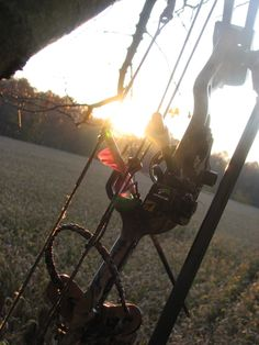 archery in the fall. Longbow, Bowhunting, Motivational Pictures, Animal Games, Southern Charm, Archery, Country Life, Eve, Wildlife