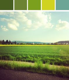 Colorcode green