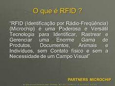 A Dilma adorou esta idéia da ONU