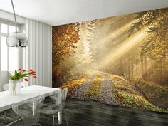 WALL MURAL PHOTO WALLPAPER DIMENSIONS Height 232cm Width 315cm Approximately Height 92 8 inches Width 126 inches POSTAGE Within United Kingdom 3-5