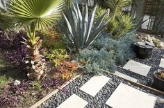 pacific northwest front yard plant designs | water-wise xeriscape. Photo by Jeremy Levine Designs.
