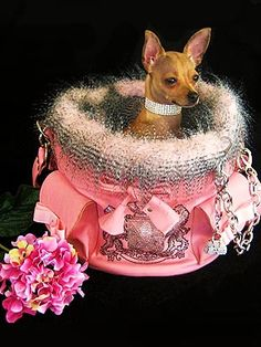 Canine Couture Creations - LEGALLY PINK                                                                                              ~DoggyStyle'N~