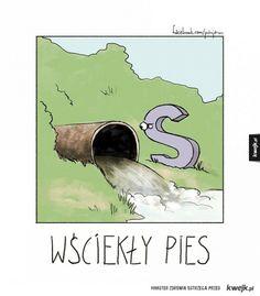 Alfabet według Jarońskiego Polish Memes, Have Time, Einstein, Harry Potter, Jokes, Lol, Humor, Funny, Brain