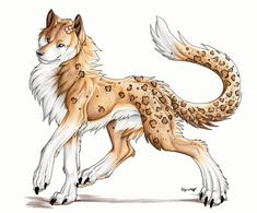 A leopard print anime wolf, I luv this pic. Cute Fantasy Creatures, Mythical Creatures Art, Magical Creatures, Anime Wolf Drawing, Furry Drawing, Anime Animals, Cute Animals, Cartoon Wolf, Fantasy Wolf