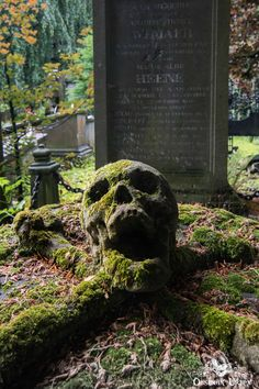 Cemetery of the Skull, Belgium. The Cemetery of the Skull is over 200 years old, on the outskirts of a Belgium city. The skull's mouth is grotesquely agape in a centuries-long silent scream, resting on a pillow of crossed femur bones. Bright green moss covers the gravestone, accentuating the hollow eye sockets and the tortured grimace.  #abandoned #belgium #cemetery #digitalphotography #grave #graveyard #macabre #photography #skill #tombstone #urbanexploration #urbex