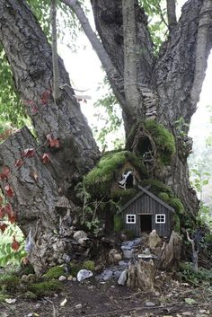 Fairy houses with book tree