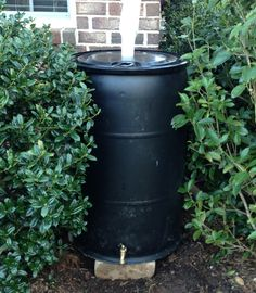 How to make your own Rain Barrel!
