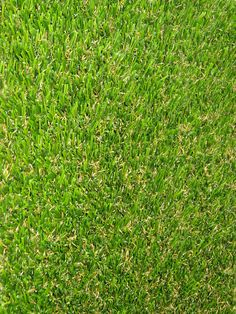 Treviso Artificial Turf - Pet Friendly 15'x50' $2842+$370 shipping