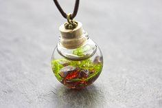 Unterwasserwelt - Moos Granat - echte Wasserpflanze