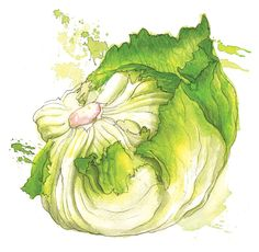 Vegetables — by Georgina Luck