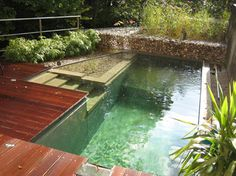 Everyone should convert their chlorine pools to natural pools, what a lovely space!