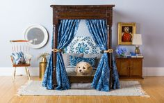 Meet the Pampered Pup Who's Living More Lavishly Than You #decorate #windowcoverings #beautifulhome http://www.architecturaldigest.com/story/national-dog-day-meet-the-pampered-pup-whos-living-more-lavishly-than-you