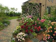 11 beautiful rose gardens if youre a proud garden owner youre aware of the cost and effort required to design a beautiful landscape