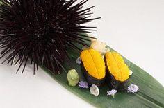 Live Wild Whole Sea Urchins. Love Uni