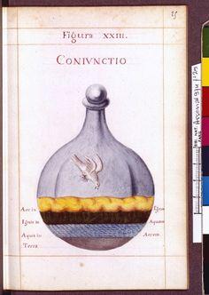 Figura XXIII - Coniunctio - Sapientia veterum philosophorum, sive doctrina eorumdem de summa et universali medicina 40 hierogliphis explicata