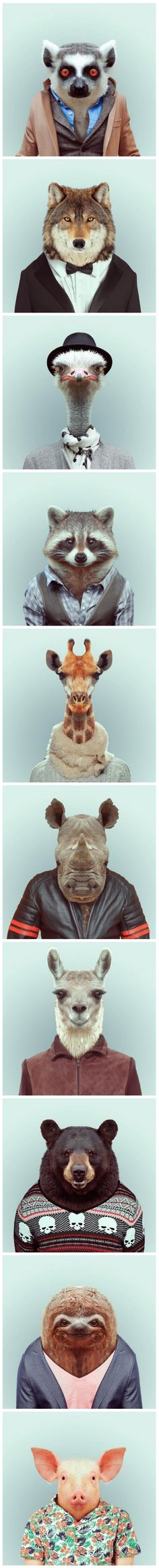 Animals in clothes. This oddly reminds me of Fantastic Mr. Fox. Hmmm