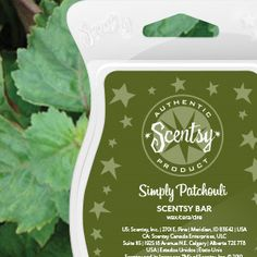 Simply Patchouli Scentsy Bar