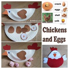 """Chicken and Eggs Activities and Crafts 