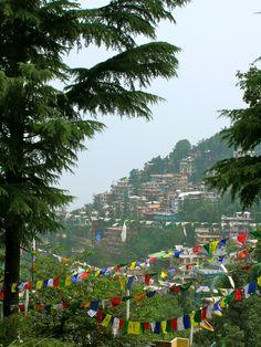 McLeod Ganj, India... Tibetan prayer flags. Home of the Dalai Lama. I must go back