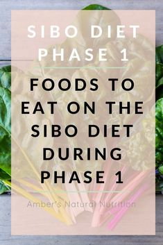 Eliminating SIBO for good is a step by step process that starts with the SIBO diet phase 1 which is the most restrictive phase of the SIBO diet that lasts weeks. Fodmap Diet, Low Fodmap, Vegetarian Protein Sources, Small Intestine Bacterial Overgrowth, Specific Carbohydrate Diet, Food T, Anti Inflammatory Diet, Gluten Free Diet, Diets