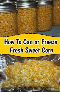 Preserving Corn - How To Freeze or Can Corn From The Garden Want to save that fresh picked sweet corn? Learn how to can or freeze sweet corn so you can enjoy the taste of summer all year long! Freezing Vegetables, Canning Vegetables, Freezing Asparagus, Freezing Fresh Corn, Veggies, Home Canning Recipes, Canning Tips, Easy Canning, Canning Food Preservation