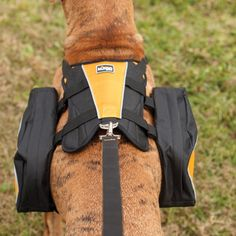 We all - dog included - like this pack. It fits our 50-55 lb. dog well, and has room for two water bottles, a foldable bowl and treats. Clipping it on is easy. And, the dog really seems to be fine with wearing it. (He gets excited when it comes out of the closet.)