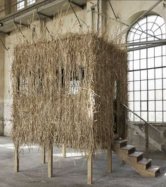 Mark Dion. Hunting Blind - The Dandy - Rococo, 2008  Diverse materials and objects