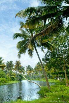 Découvrez et parcourez les paysages magnifiques de l'Inde !