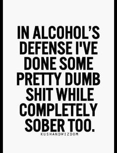 """Precisely. """"In alcohol's defense"""" #mymotto"""